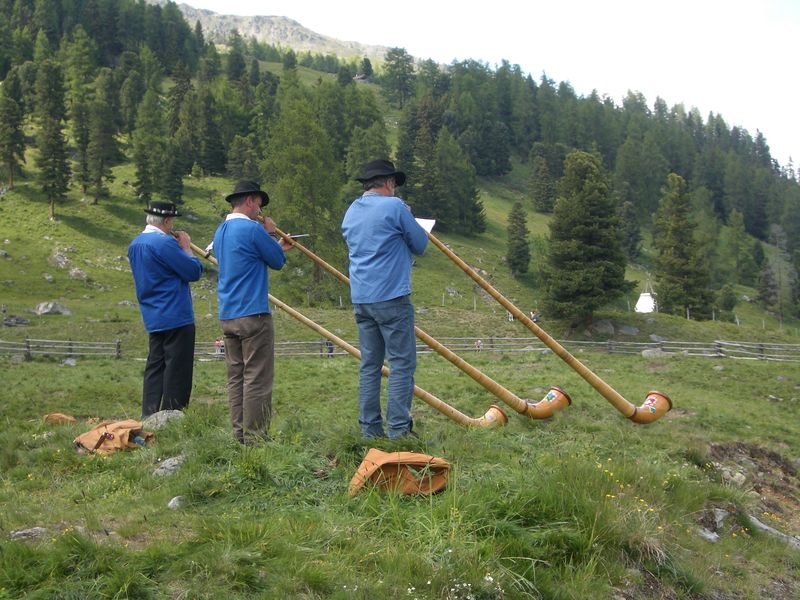 Alpine horn players