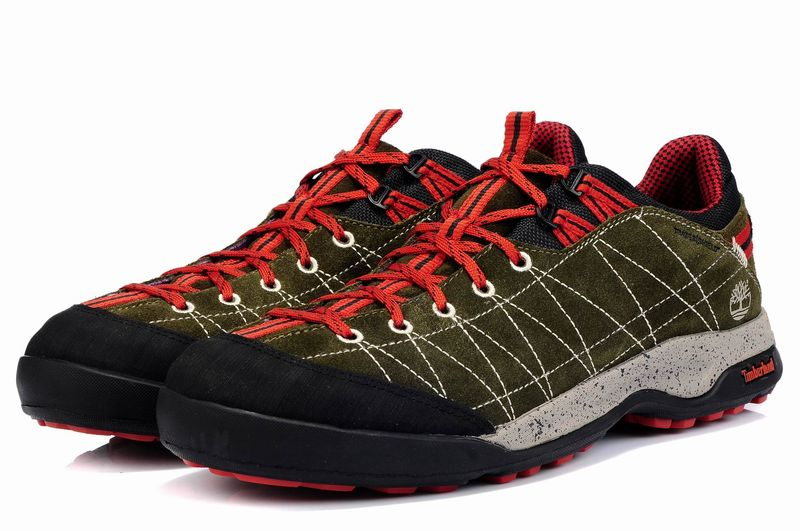 Timberland Mens Earthkeepers Radler Approach Canvas Shoes Low (2)